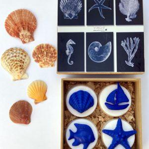 Kit 4 Conchas - 4 sabonetes vegetais decorados com conchas e estrelas do mar